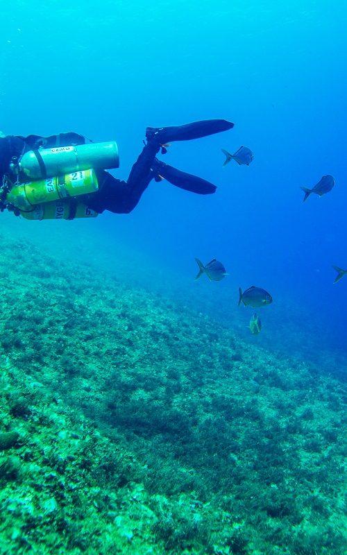 Solo Diver